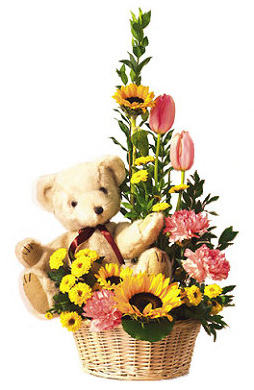 Teddy Bear & Flower Basket
