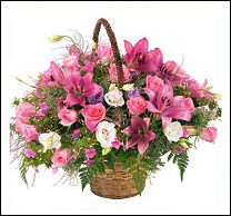 Women's Day Arrangement - Premium